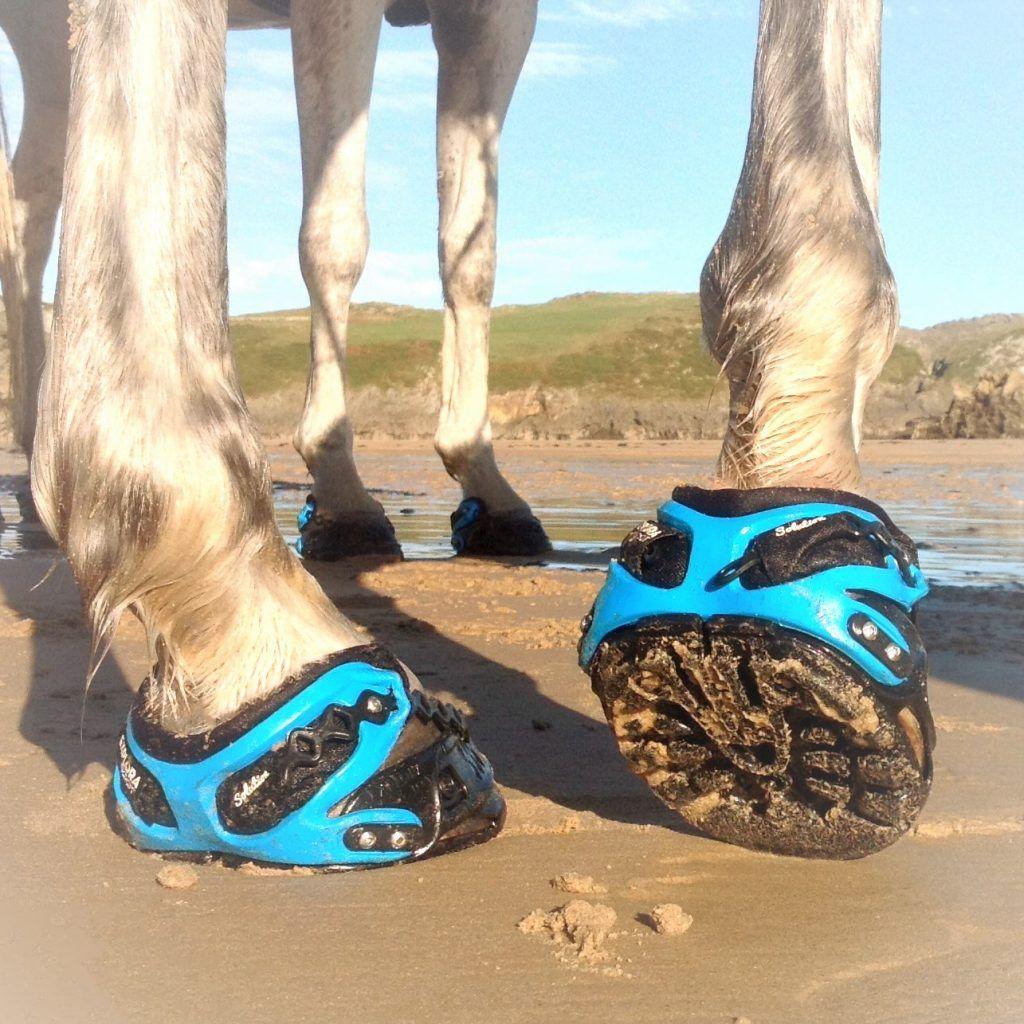 Pisada de la bota para caballos Explora Boot