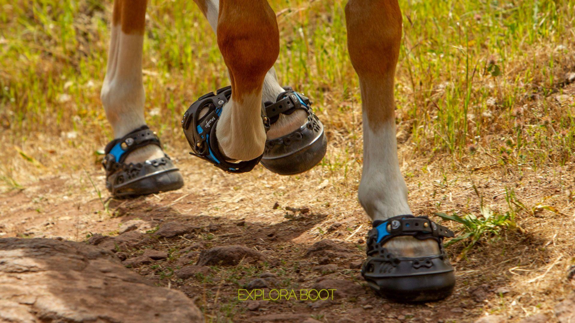 Explora Boot, the spanish hoof boots