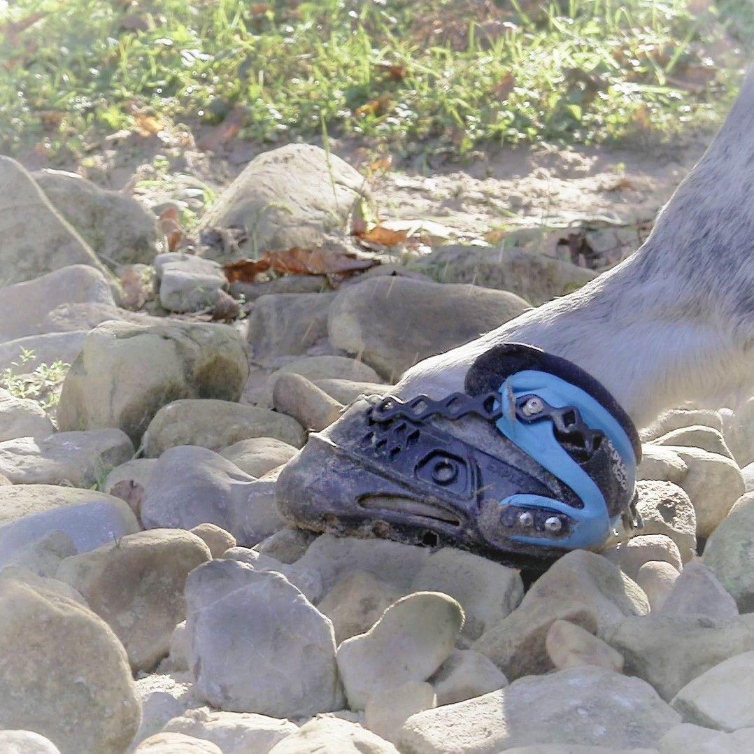 Flexibilidad, resistencia y capacidad de adaptación de la bota Explora Boot