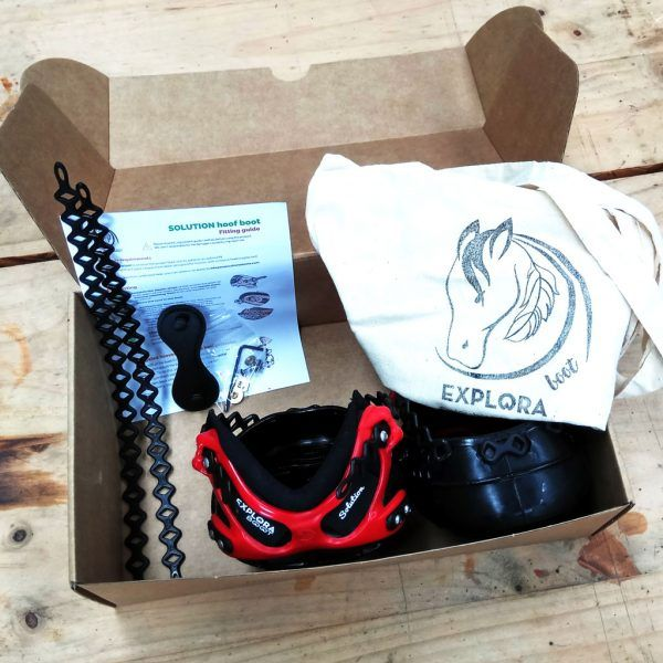 Contenido de la caja de botas para caballos Explora Boot